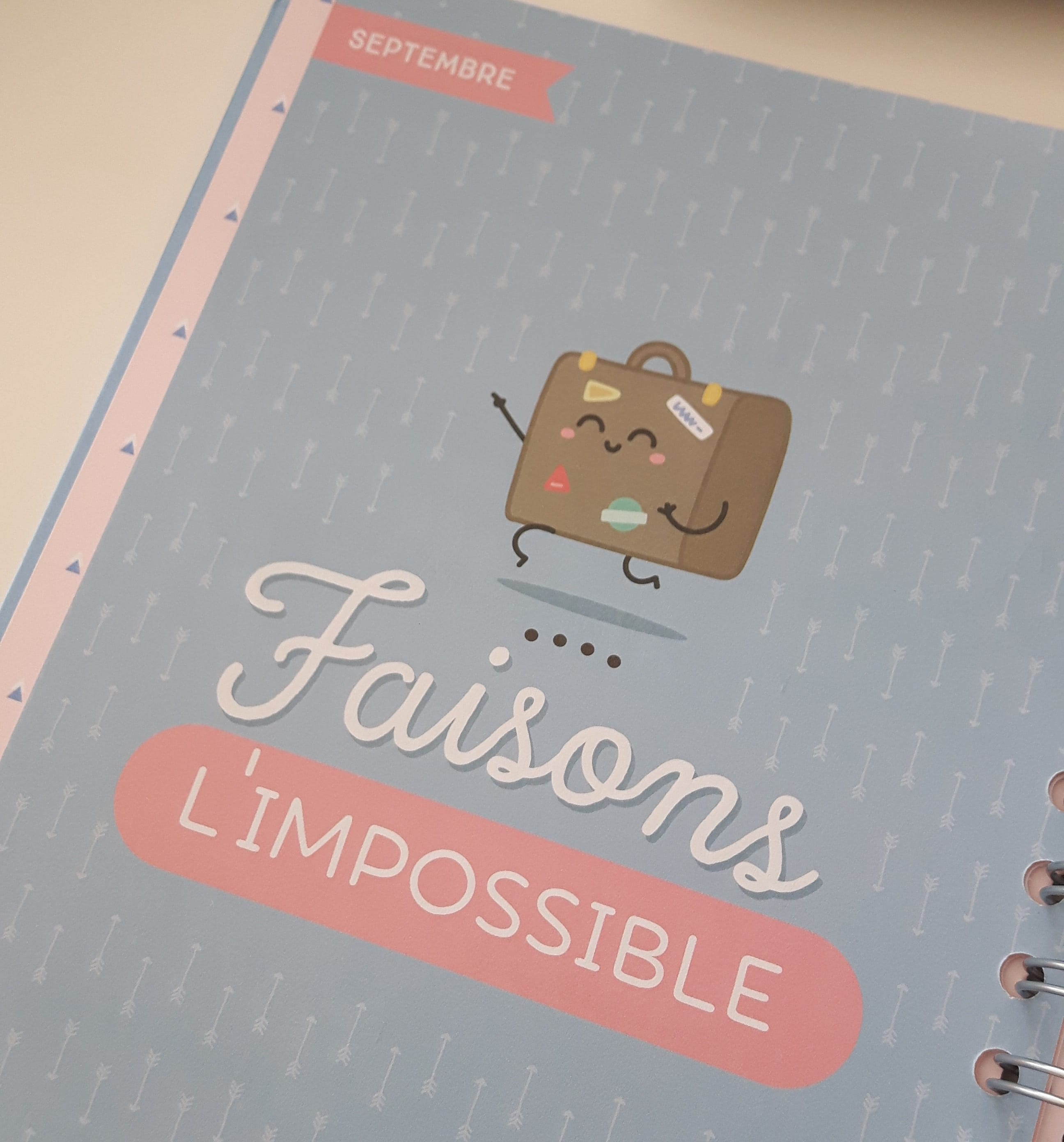 Faisaons l'impossible - mr wonderfull