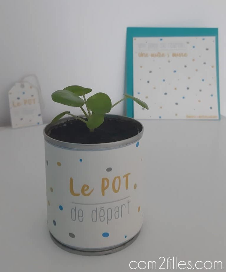 idee-cadeau-pot-de-depart-collegue